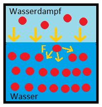 Die Funktionsweise des Schnellkochtopfes - Wasserdampf und Moleküle